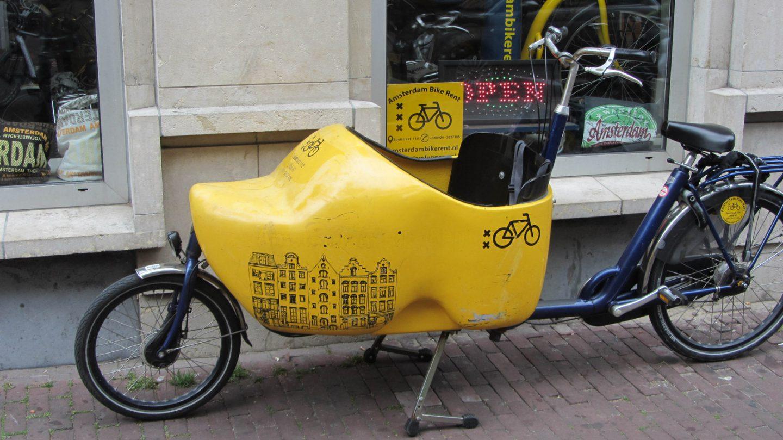 Wooden shoe bike