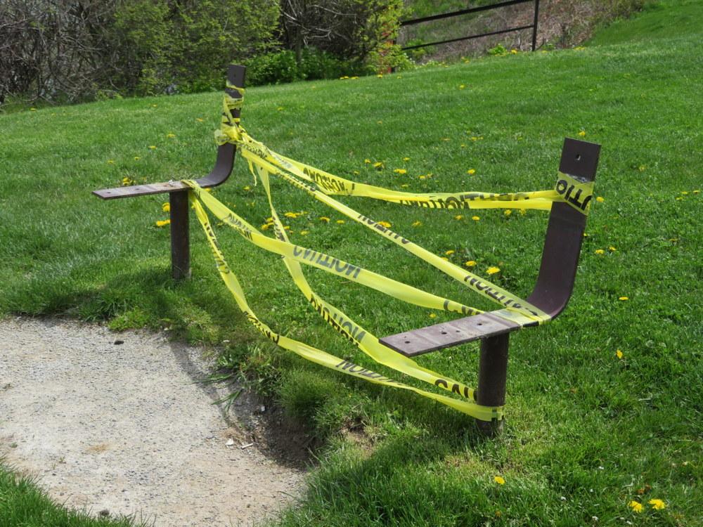 Covid bench in NOTL